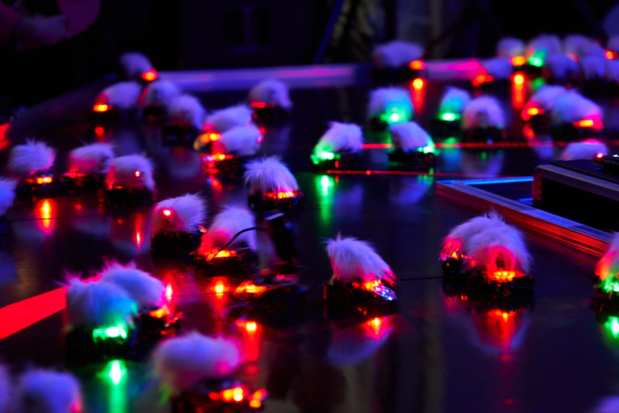 Lasermice dyad